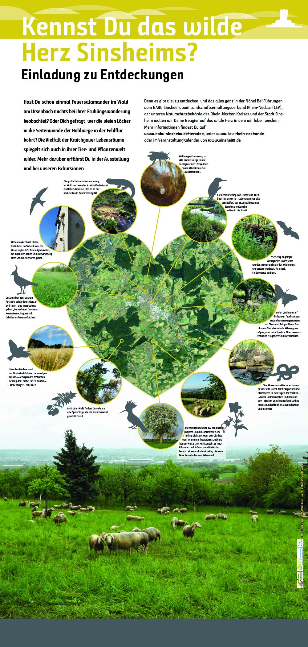 Tier- und Pflanzenwelt im Kraichgau