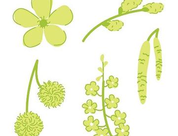 Blütenformen