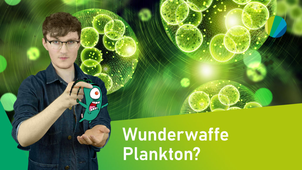 Plankton: Der CO2-fressende Superorganismus