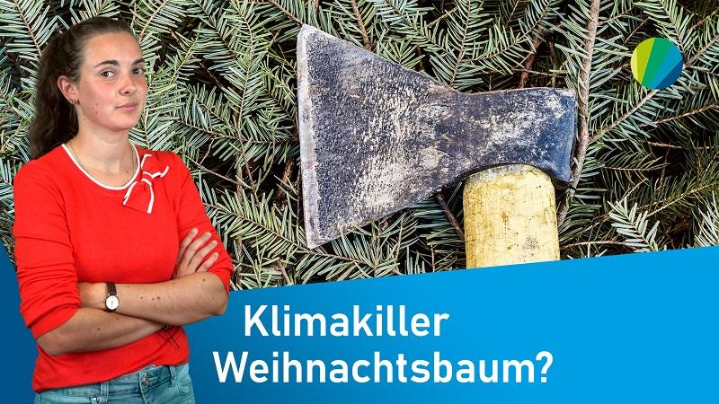 Nachhaltiges Weihnachten. So geht's | klima:check