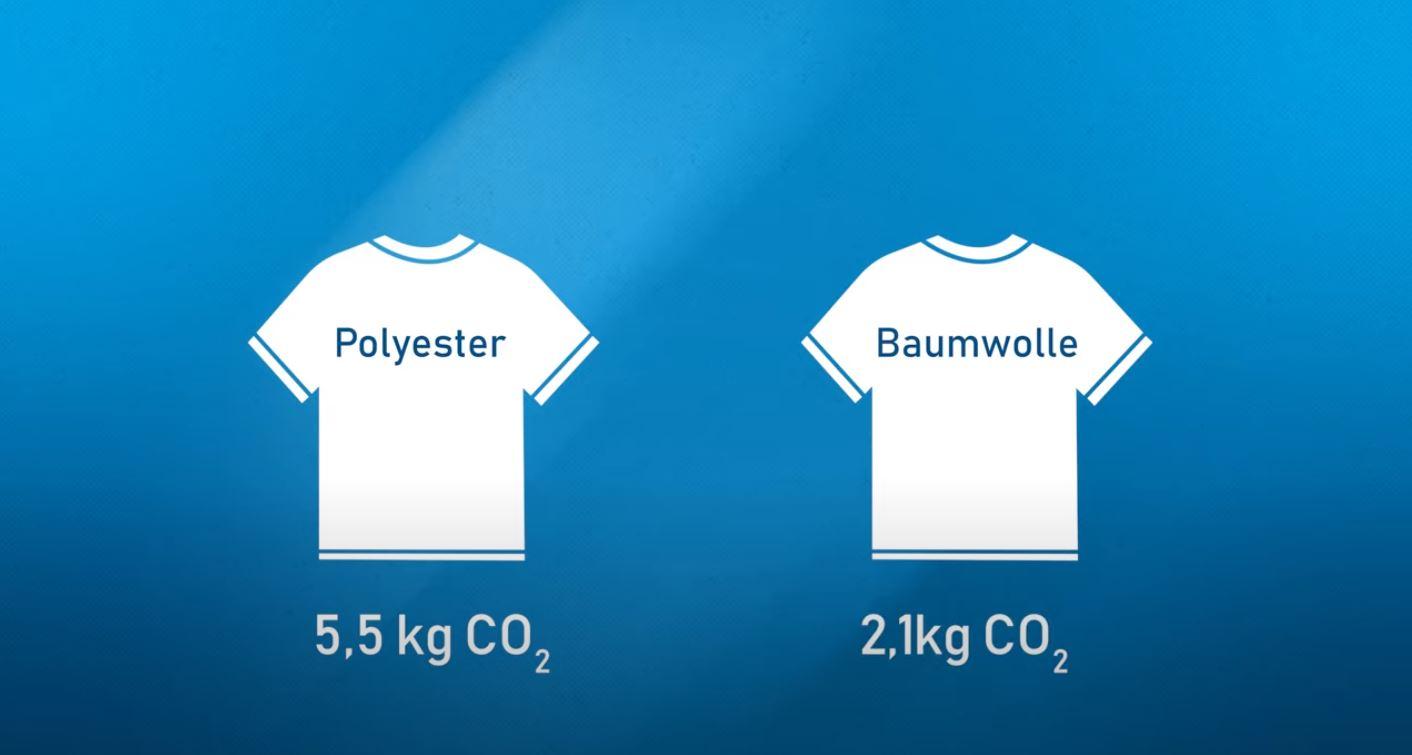 Baumwolle Polyester Vergleich