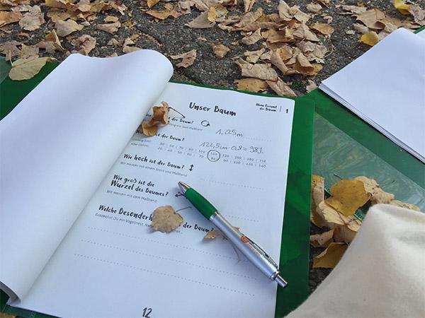 """Fortbildung """"Mein Freund der Baum"""" für Pädagoginnen und Pädagogen"""