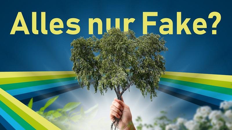 Bäume pflanzen fürs Klima: Hype oder Hoffnung?