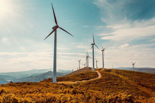 """Planspiel """"Der Windkraftkonflikt"""""""